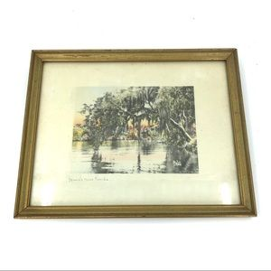30s Framed Watercolor Spanish Moss Florida Print